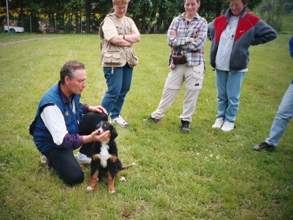 mario-hundetrainer-hundeschule-welpenschulung-05