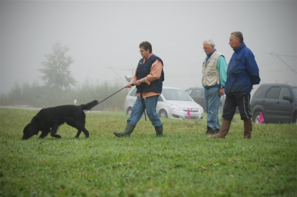 mario-hundetrainer-hundeschule-hundesport-fährten-04