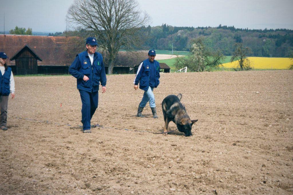 mario-hundetrainer-hundeschule-hundesport-fährten-05