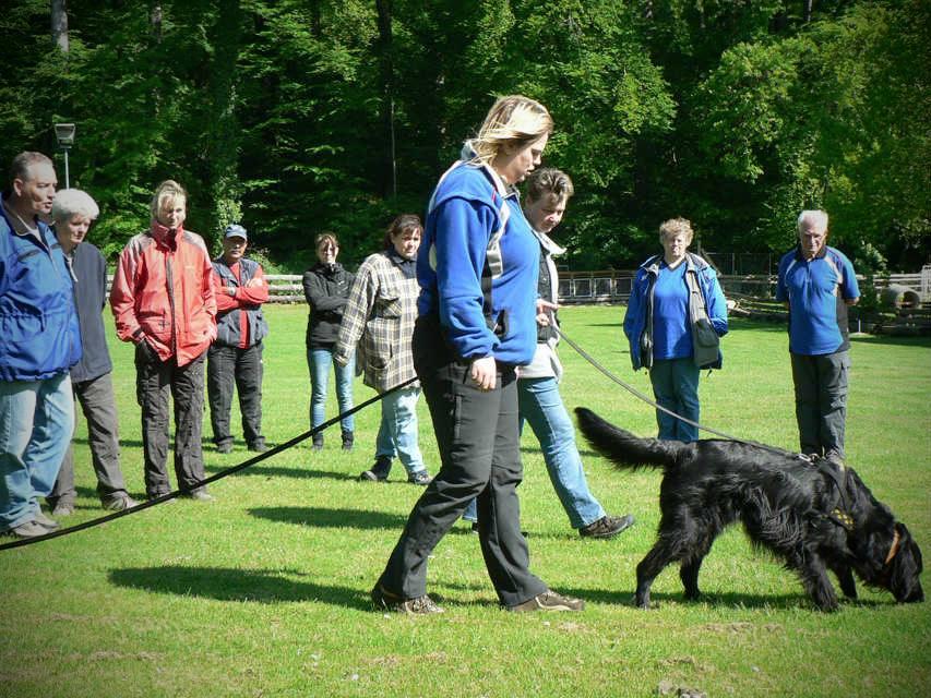 mario-hundetrainer-hundeschule-seminar-01