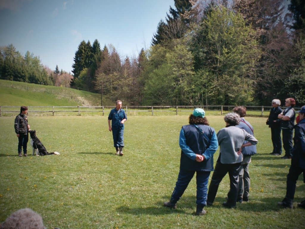 mario-hundetrainer-hundeschule-seminar-03