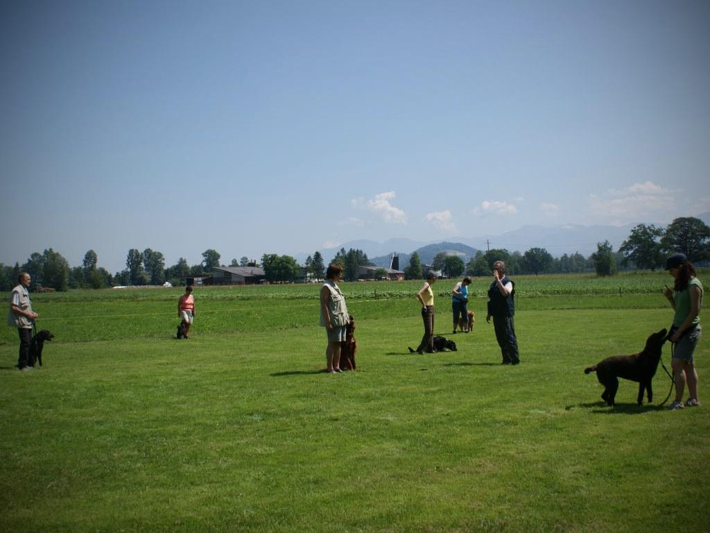 mario-hundetrainer-hundeschule-seminar-04