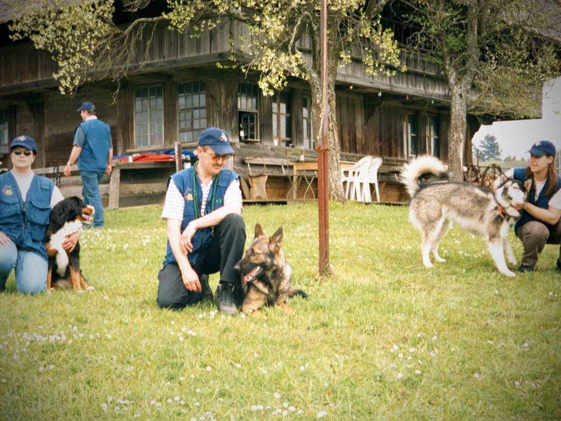 mario-hundetrainer-hundeschule-seminar-08
