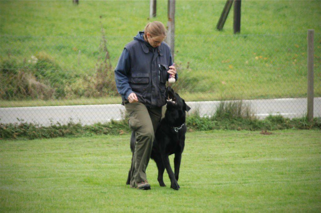 mario-hundetrainer-hundeschule-hundesport-unterordnung-03