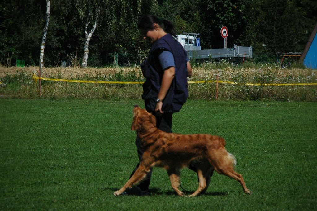 mario-hundetrainer-hundeschule-hundesport-unterordnung-06